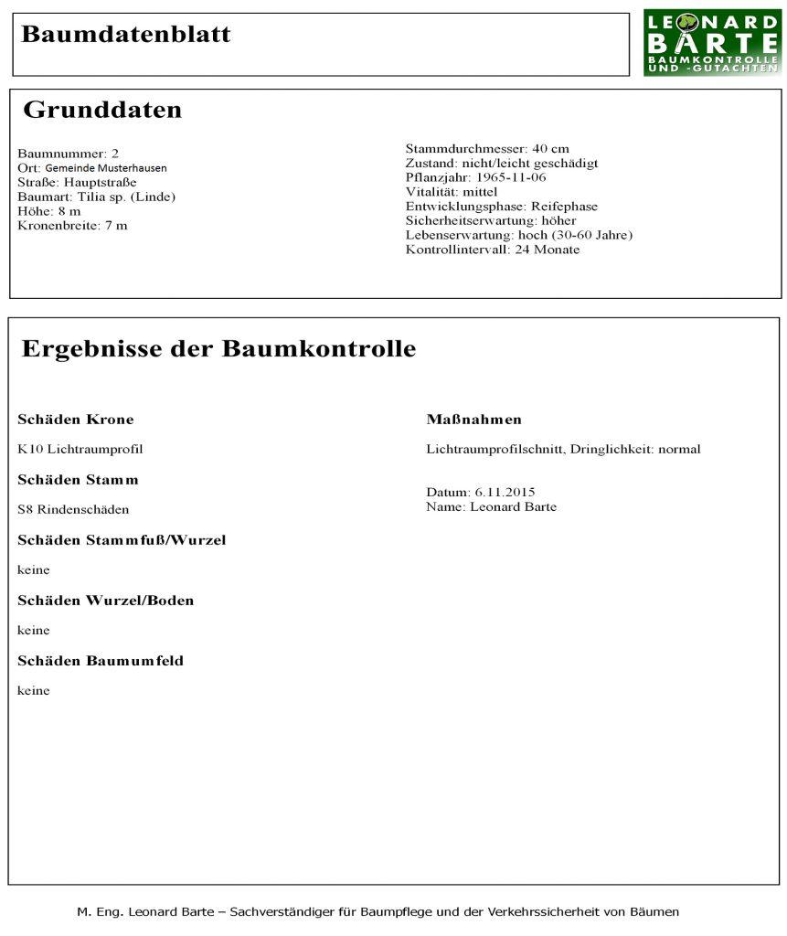 baumkontrolle_2
